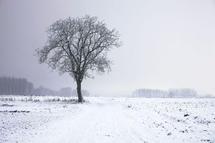 frio para emagrecer (3)