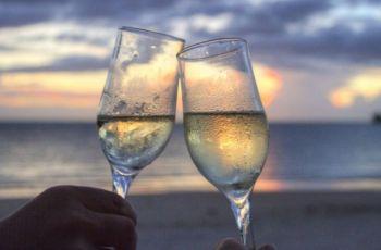 A Verdade Sobre o Álcool, o Emagrecimento e a Hipertrofia