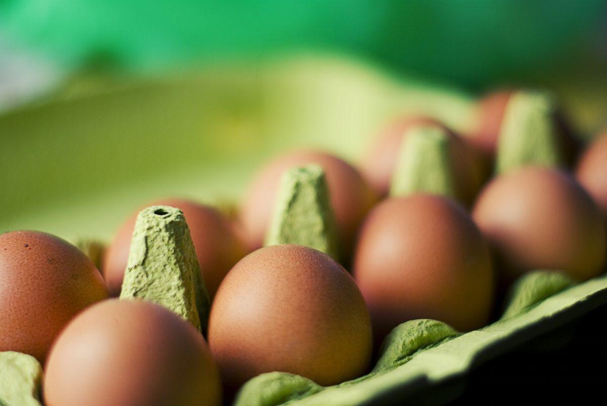 ovos,emagrecer,saúde,gordura boa,dieta,proteína,atkins,paleo,keto,slow carb