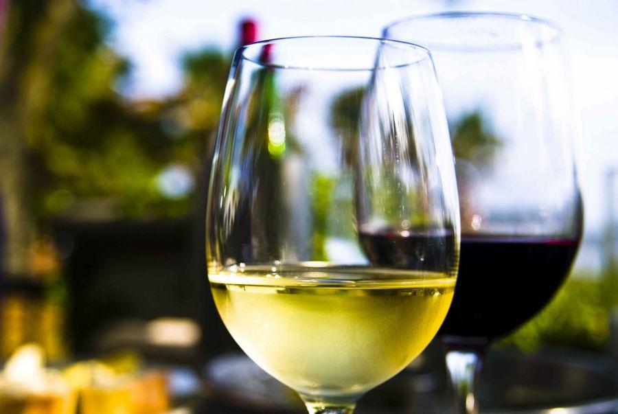 vinho low carb, vinho rose, vinho branco, vinho tinto, dieta, emagrecer, saude, melhores vinhos, paleo
