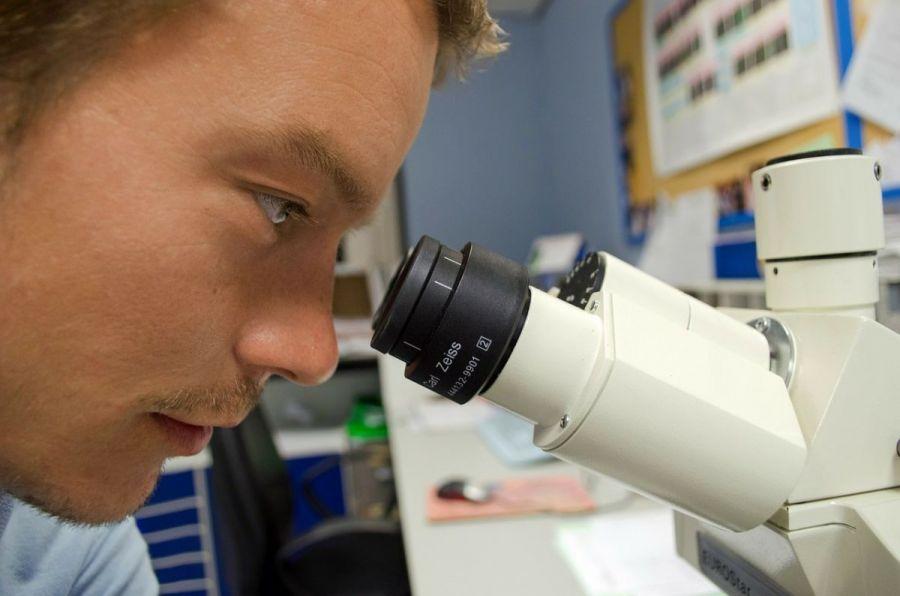 medidas - o IMC pode ser usado em contextos científicos específicos - mas não sempre