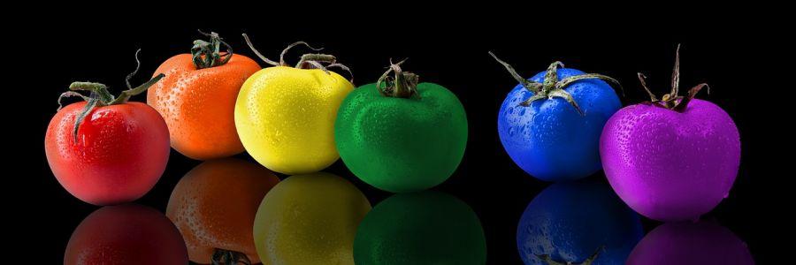 dieta low-carb: conceitos e vertentes