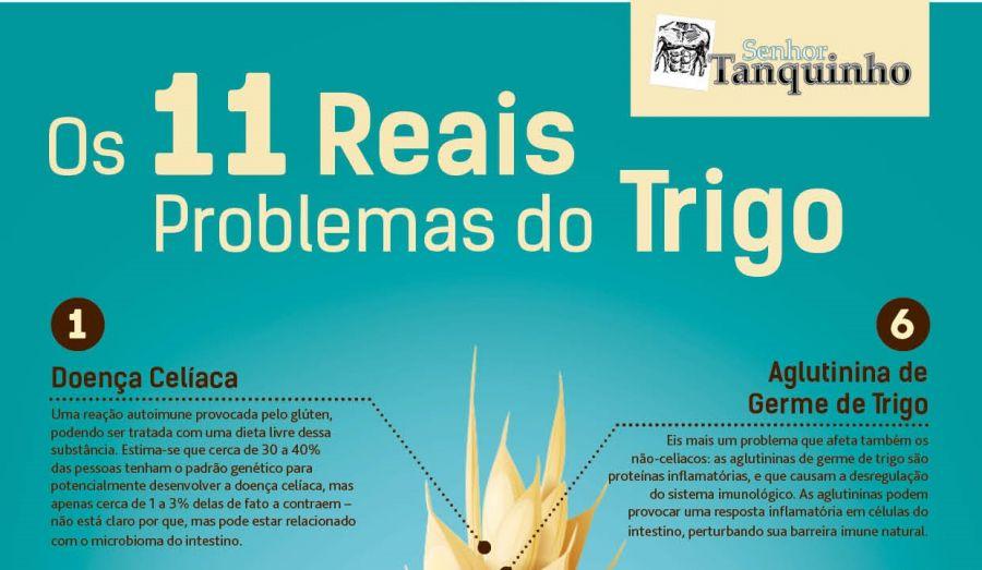 trigo-thumb