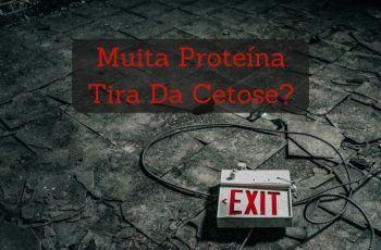 """Proteína E Dieta Cetogênica: """"Excesso"""" De Proteínas Tira Da Cetose?"""