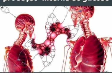 Gliconeogênese: O Que É E Qual Seu Papel Na Dieta Low-Carb