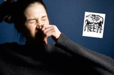 Rinite E Sinusite: Dicas De Alimentação E De Estilo De Vida Para Melhorar Problemas Respiratórios