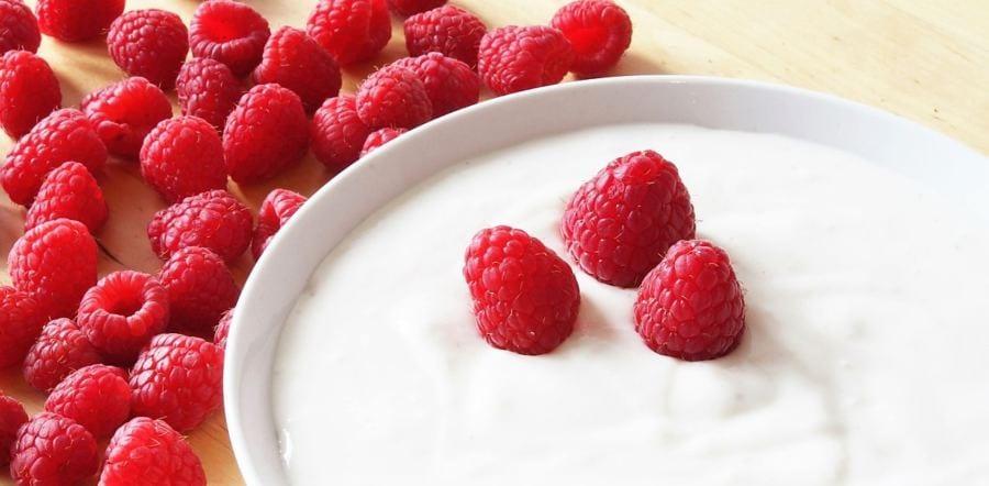 fiquei sempre atento à quantidade de carboidratos dos iogurtes se estiver fazendo uma dieta low-carb