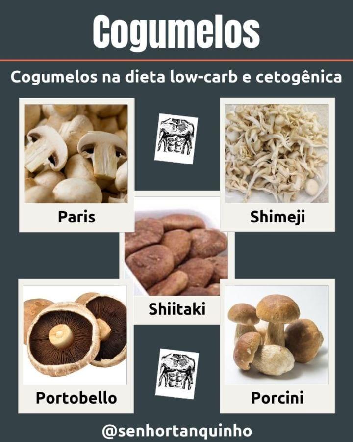 Lista dos principais tipos de cogumelos low-carb liberados na dieta low-carb e cetogênica